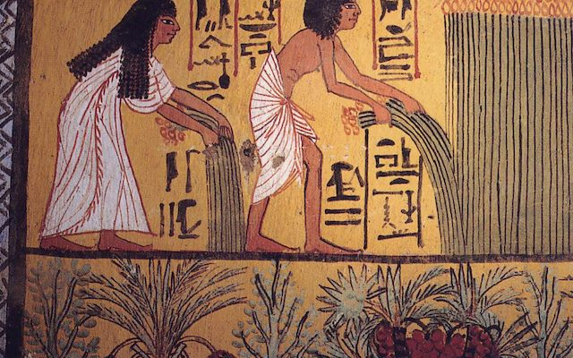 ANELC eLecture Series 2021: Egyptian Influences in Biblical Hebrew